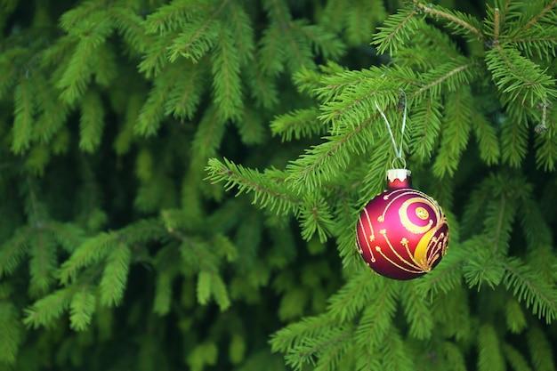 전나무 나무 가지에 매달려 크리스마스 공