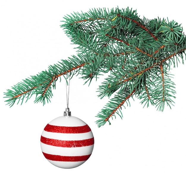 Рождественский бал на еловой ветке на белом