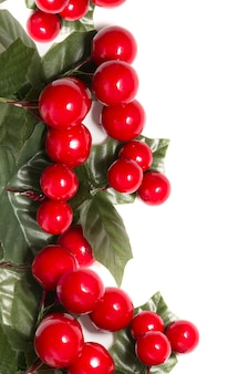 Christmas berry branches