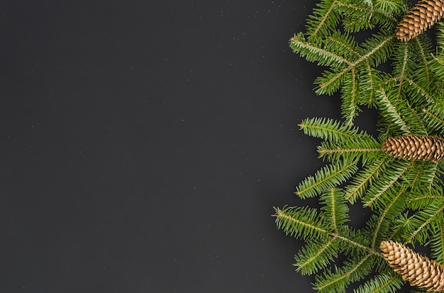 Christmas border - tree branches with pine cones isolated on black, flat lay banner mock-u