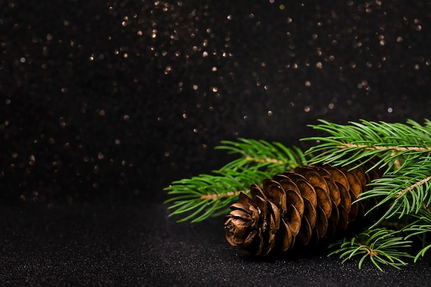 Christmas card with christmas tree branch and pine cone on dark background