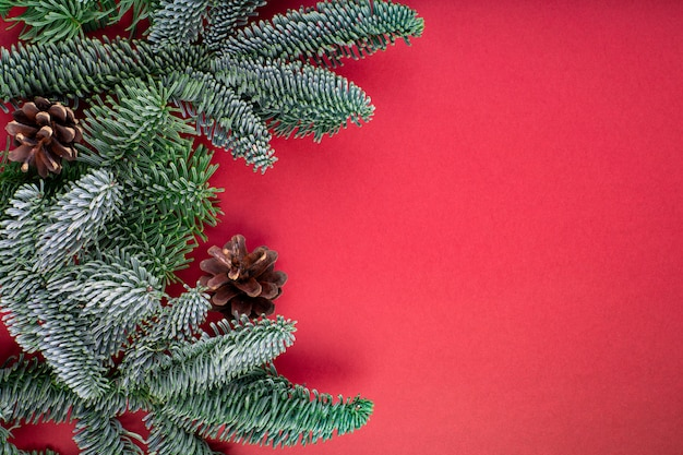 Christmas composition. christmas red decorations, fir tree branches with bumps