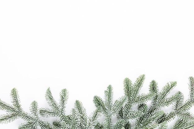 白のクリスマス作文モミの木の枝。