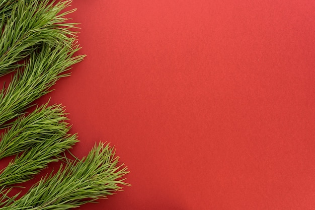 Christmas composition. fir tree branches on red background. flat lay, top view, copy space