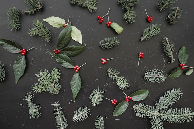 Christmas composition of green branches