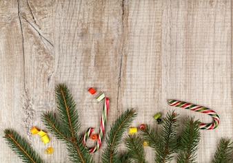 Christmas composition of fir branches