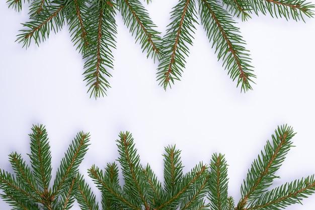孤立したクリスマスの構成witgモミの木の枝