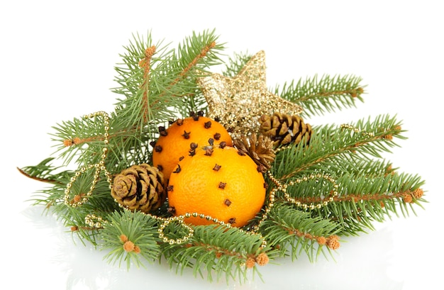 Christmas composition with oranges and fir tree, isolated on white