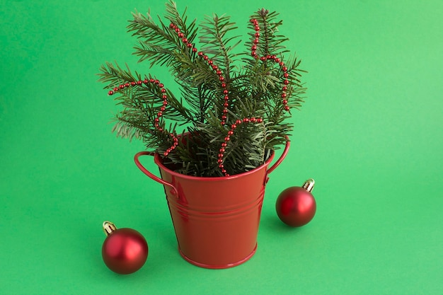 Christmas composition with spruce branches in the red bucket on the green background. copy space. close-up.