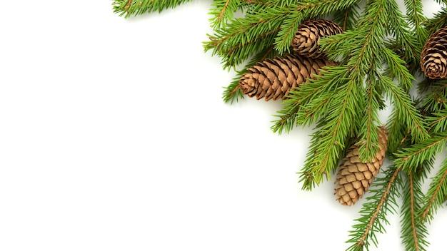 Рождественские концепции на белом фоне елки и шишки.
