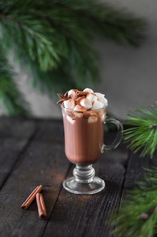 Christmas concept warming cocoa drink with marshmallows and cinnamon on a wooden surface with pine sprigs.