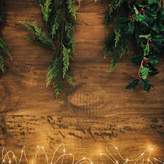 Рождественская концепция с омелой