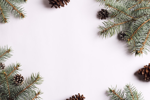 Christmas decoration composition pine cones spruce branches