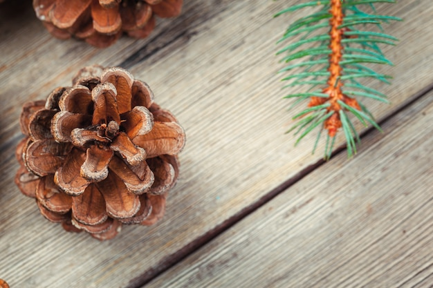 Christmas decoration with fir tree and pine cones on white wooden