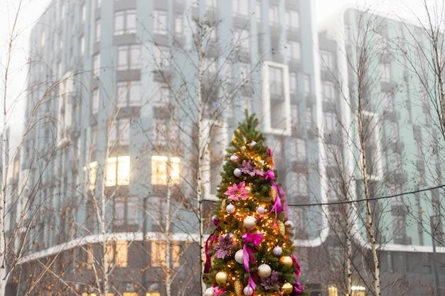 クリスマスの飾り:モミの木の枝にぶら下がっている紫色のボール