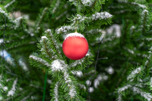 Christmas decorations on a snow-covered tree outdoors.