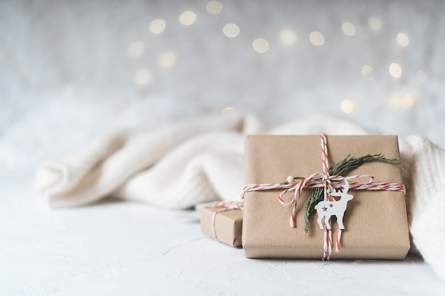 주니퍼와 사슴 크리스마스 에코 선물. 빛나는 눈 bokeh.