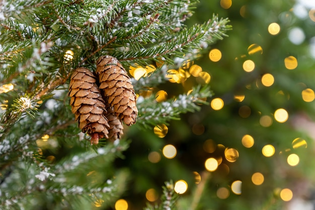 Christmas festive background with copy space. cones on fur tree branch with bokeh backdrop. new year poster for design.