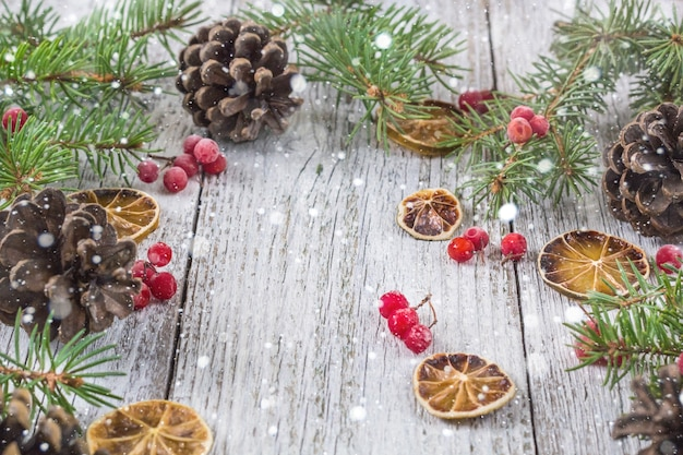 Christmas fir branches with cones viburnum berries and dry lemon slice. top view with copy space for your text