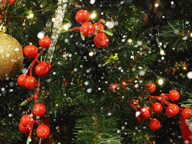 Christmas fir branches with decoration