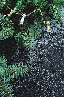 Christmas fir on the dark surface with snow
