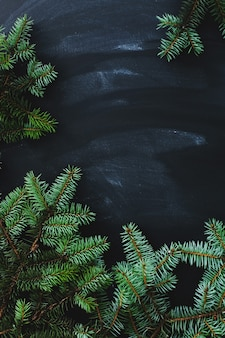 Christmas fir on the dark surface