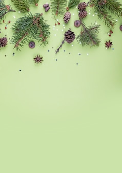 Christmas fir tree branches, berries, small decorative stars and pine cones on green background.