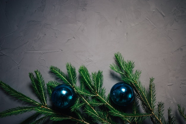 Christmas fir tree branches over dark background with copy space