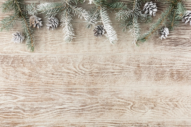 Christmas fir tree with pine cones and snow on wooden white board. christmas reindeer carrying a fir-tree in a sleigh. winter background