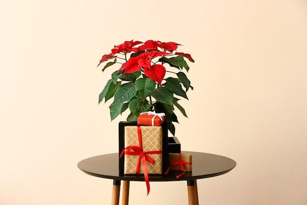 Рождественский цветок пуансеттия и подарки на столе против цвета