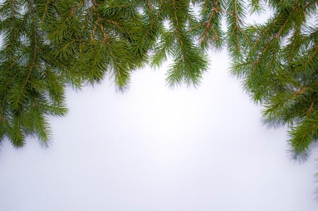 Новогодняя рамка из веток новогодней елки рождественские обои плоская планировка вид сверху копия пространства