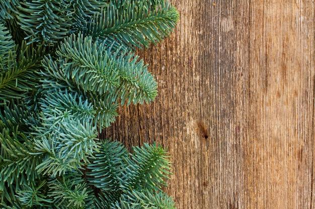 Рождественские свежие вечнозеленые ветки деревьев