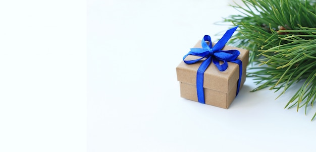 Christmas gift box, for tree branches on white background.