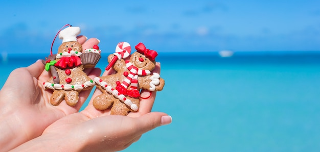 Christmas gingerbread cookies in hands against the turquoise sea