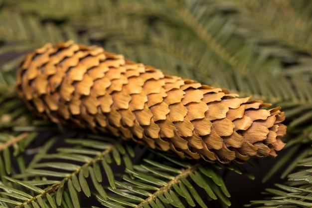 木製の背景にクリスマスグリーンパインモミトウヒの枝モミの木の枝の背景を閉じる
