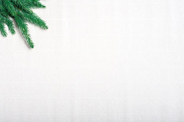 Рождественская открытка. ветка зеленой хвои на белой гофрированной бумаге.