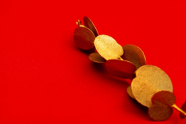 Christmas holiday decoration on bright red background