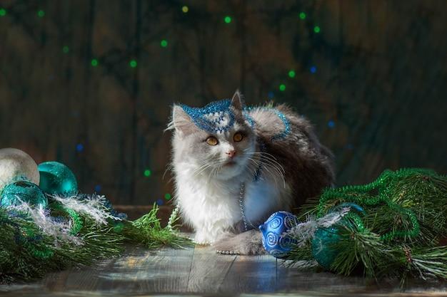 크리스마스 장식으로 크리스마스 고양이입니다. 크리스마스 시간에 집에서 고양이. 크리스마스 트리 장식을 조사하는 고양이