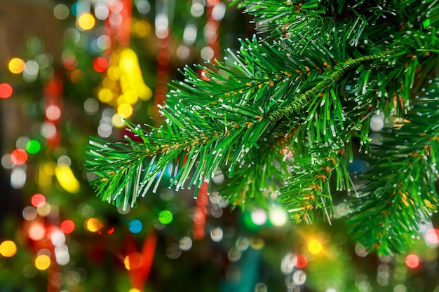 Рождественские огни, висящие на ветке дерева на фоне елки