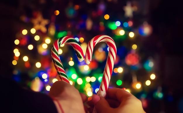 크리스마스 트리 배경에 크리스마스 막대 사탕. 선택적 초점입니다. 사람들.