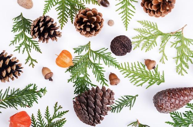 Рождественский образец природы с ягодами рябины, сосновыми шишками и красным физалисом
