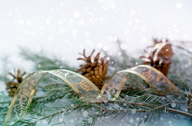 Christmas and new year background. fir branches and cones, gift ribbon.