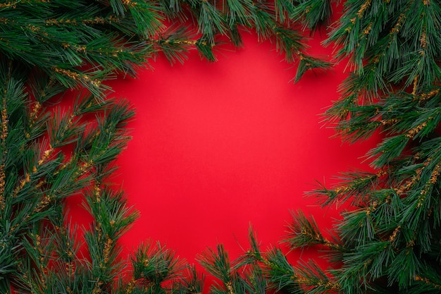 Christmas or new year decorations: christmas tree branches on red with copyspace
