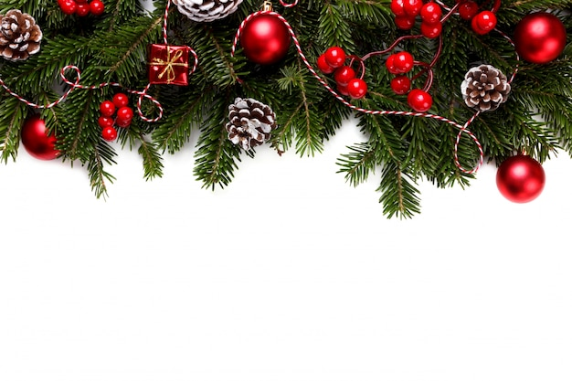 Christmas or new year fir branch