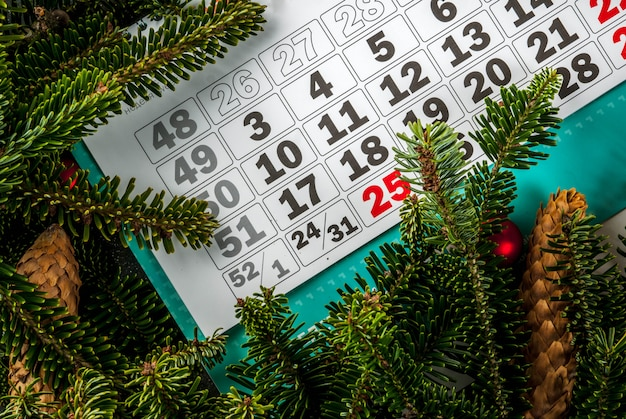 Christmas and new year gift background with fir tree