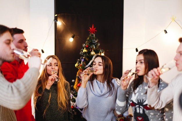 Christmas and new year preparations. company of attractive happy young people celebrate