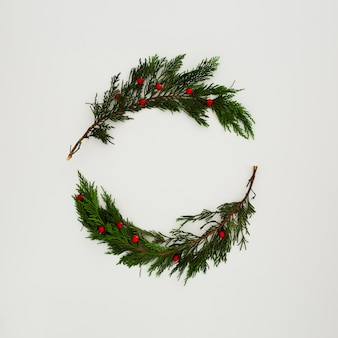 Christmas pine leaves on white