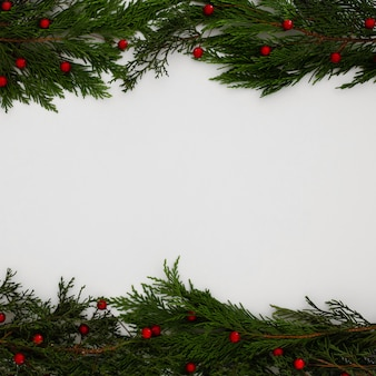 Christmas pine tree leaves on a white background with copy space
