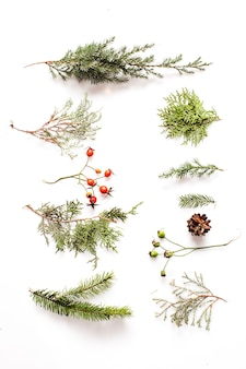 Рождественские растения на белом фоне. плоская планировка леса и природы