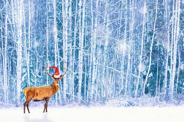 크리스마스 시즌 예술적인 환상적인 겨울 이미지입니다. 눈보라 동안 겨울 눈 덮인 숲에 대 한 산타 모자와 고귀한 사슴.